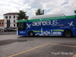 While you certainly could take the AeroBus - it doesn't have an under the bus compartment for luggage