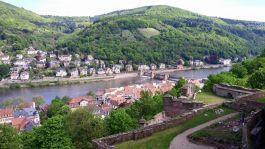 Tulip-Time-Rhine-Heidleburg-20