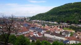 Tulip-Time-Rhine-Heildleburg-21