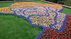 Tulip-Time-Rhine-Keukenhof-Gardens-22