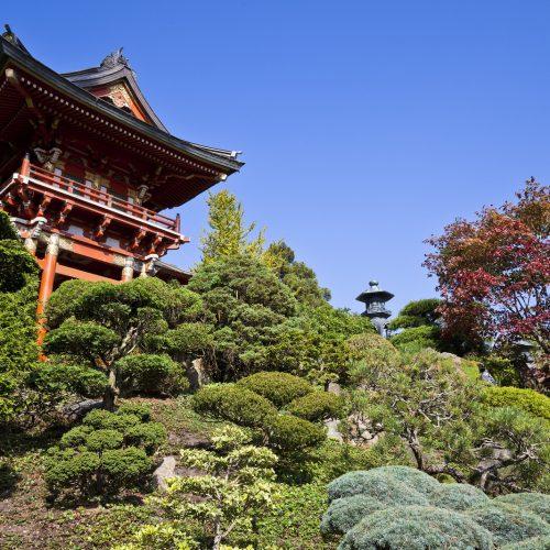 Japanese Tea Garden - Golden Gate park, San Francisco California