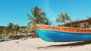 punta cana_ beach_boat_palm trees