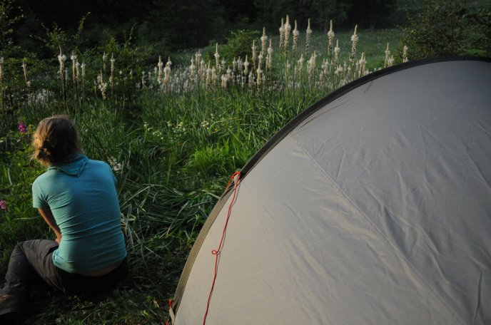 Camping, hiker, nature