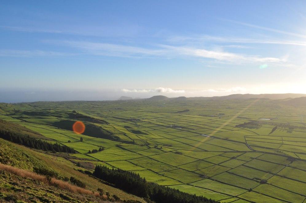 Terceira, Azores, Fields