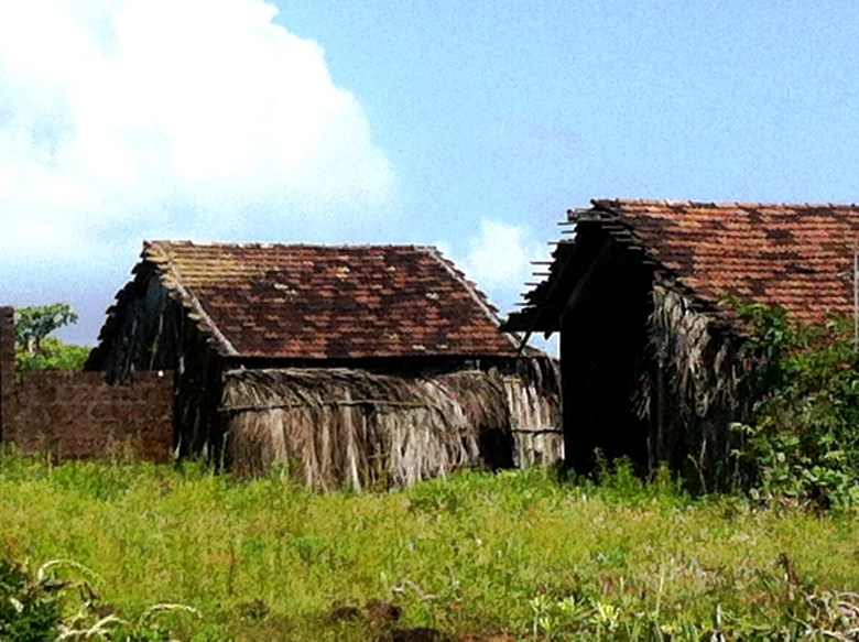 goan farm houses - South Goa