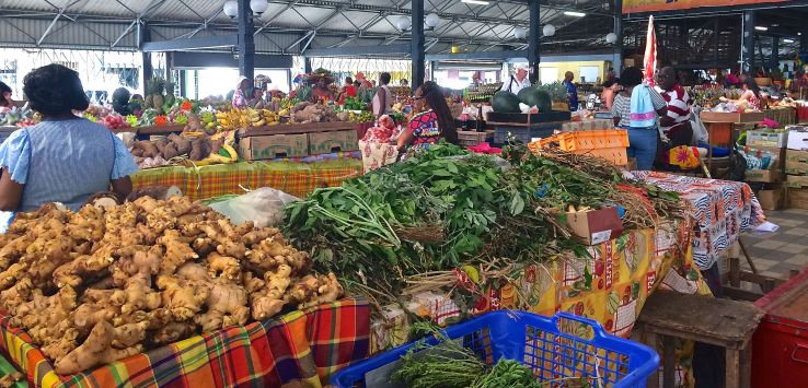 Markets-Martinique-Ginger