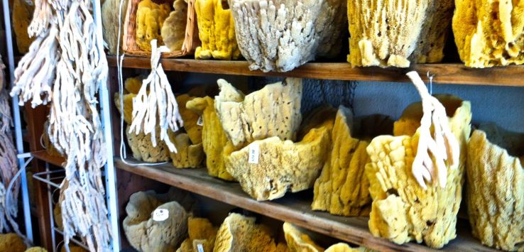 Markets-Tarpon Springs, FL-Sponges