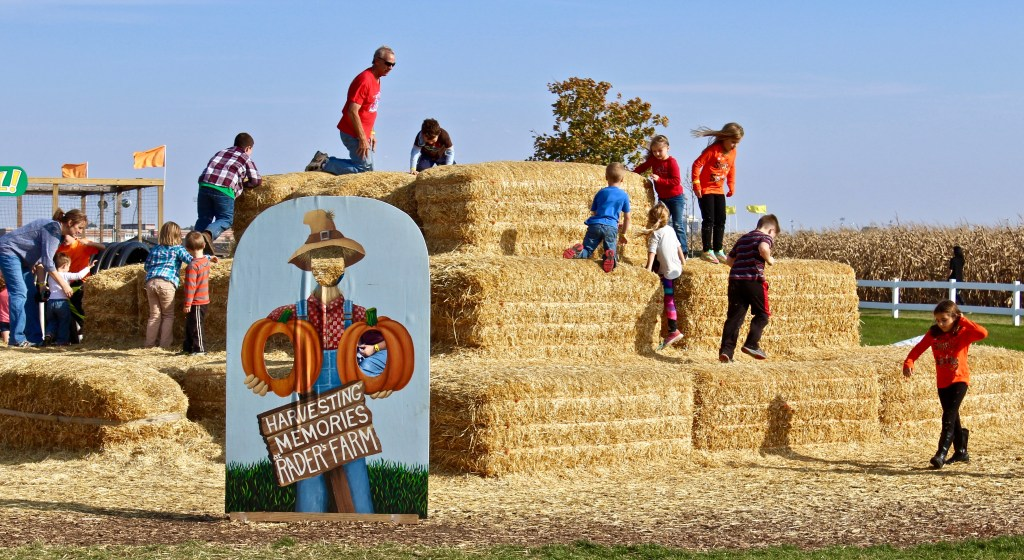 Pumpkin patches and corn mazes: King of the Mountain...hay bale mountain, that is. (Photo by Suzanne Ball. All rights reserved.)