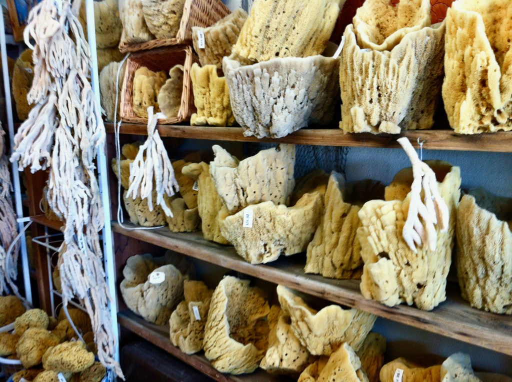 Sponge shops in Tarpon Springs, FL sell authentic natural sponges harvested by Greek divers.