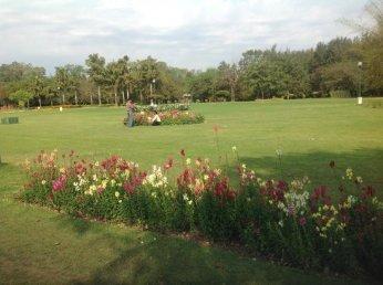 Image result for garden of fragrance chandigarh
