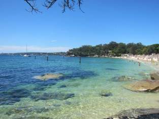 Shark Bay, Sydney NSW