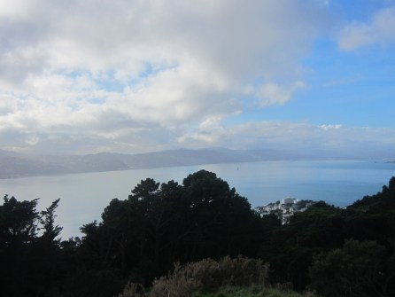 Mt Victoria Lookout Wellington NZ