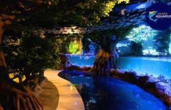 Jakarta aquarium neo soho mall jakarta barat