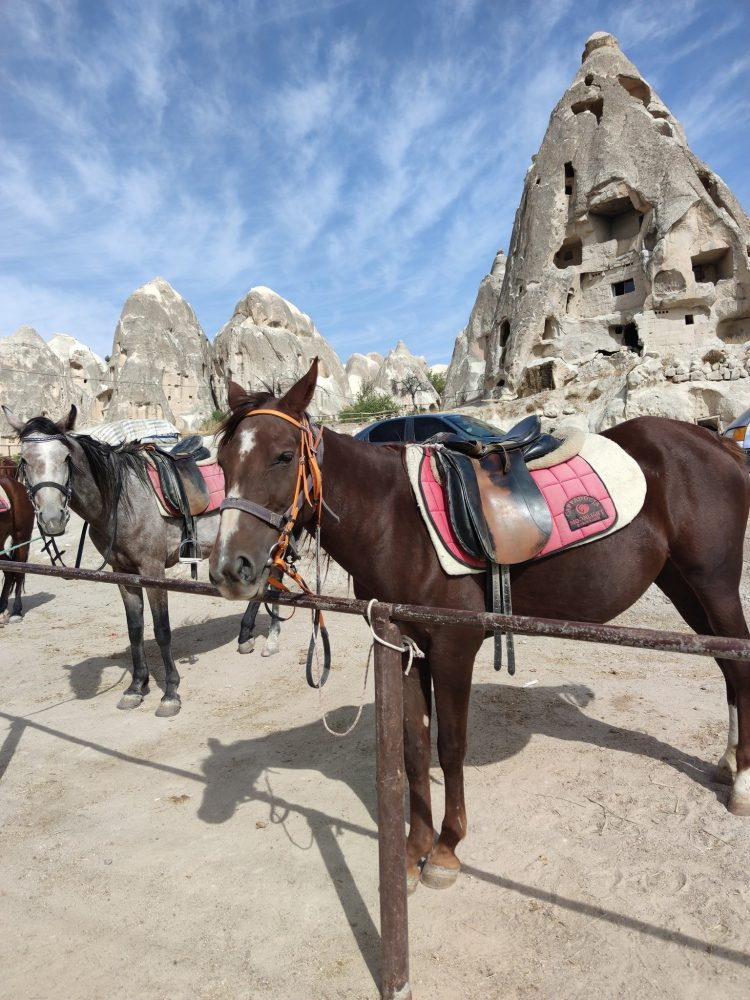 Horse Riding Moonlight Ranch Cappadocia