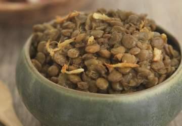 scotia spice review