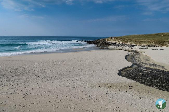 hosta north uist beaches