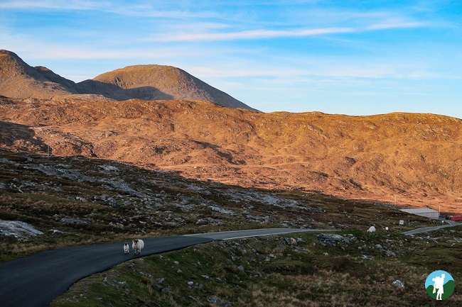 outer hebrides holidays north harris