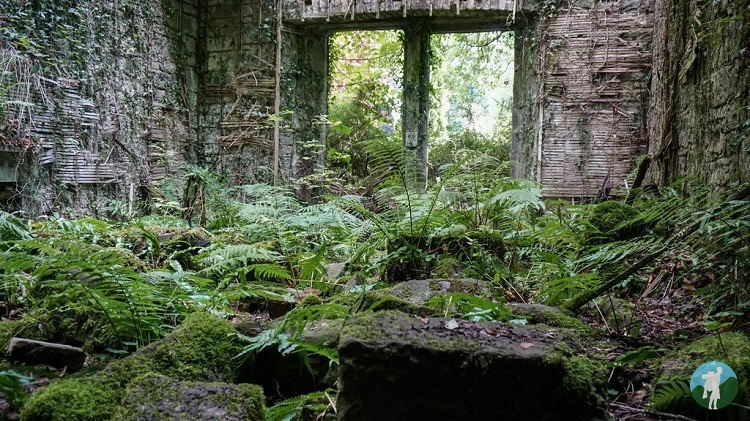 buchanan castle abandoned