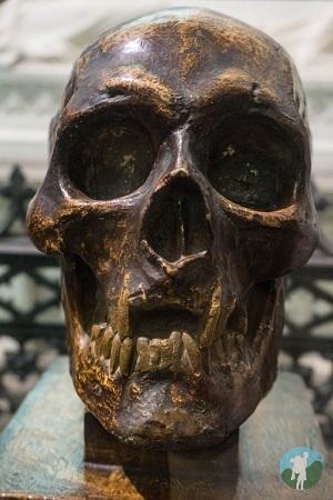 robert bruce skull dunfermline abbey outlaw king