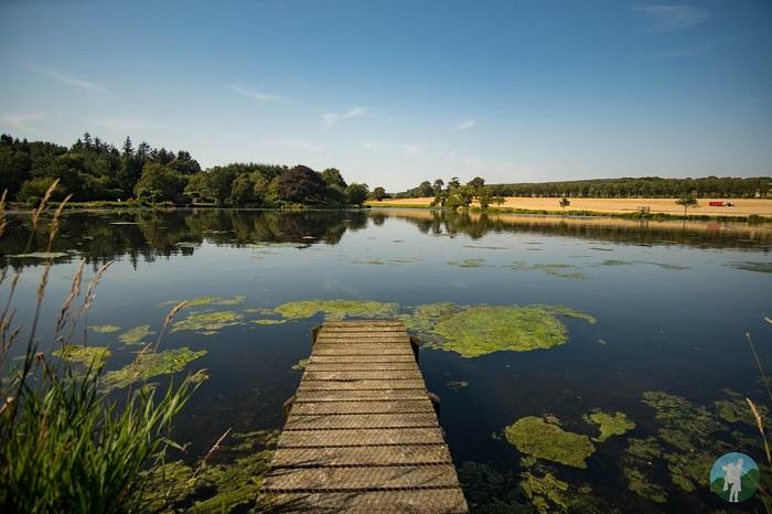 pitfour lake aberdeenshire