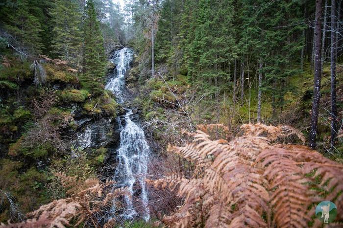 waterfall invergarry scotland