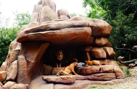 1.1434118989.lions-ridge