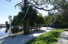 1.1436216019.hammocks-under-the-trees