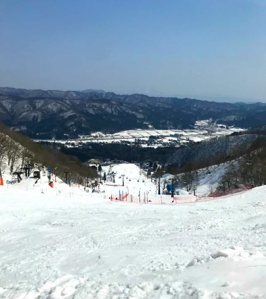 Best Ski Resorts in Japan Travels with Bibi