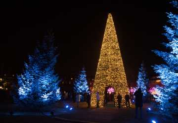 Best Place to See Holiday Lights in Asheville, NC Travels with Bibi