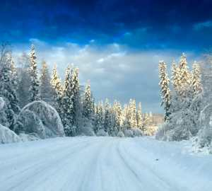 5 Tips for Winter Driving Travels with Bibi