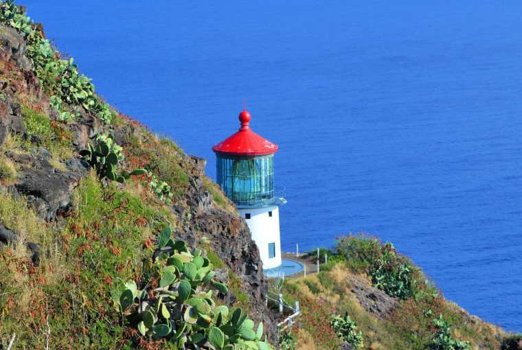 Amazing Things To See in Oahu, Hawaii Travels with Bibi