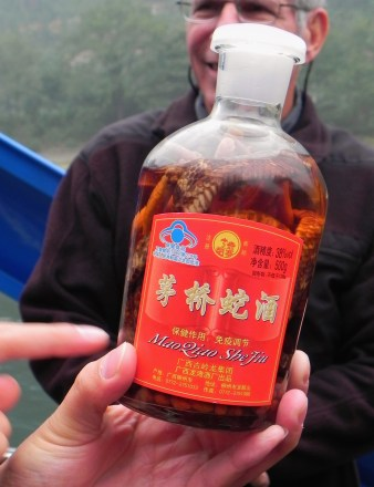 Guiling, Li River, Cruise, Snake Wine