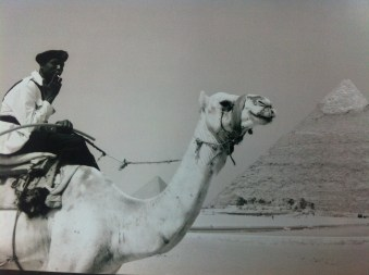 Police at the Pyramids in Cairo, Egypt.