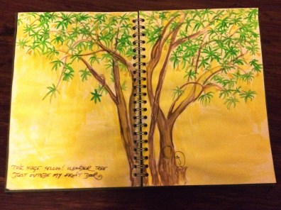 A Yellow Oleander Tree from my Tanzanian sketchbook