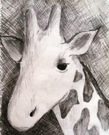 Sketch of a giraffe in the Serengeti, Tanzania