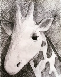 Sketch of a giraffe in the Serengeti, Tanzania