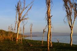Sunrise over Lake Naivasha