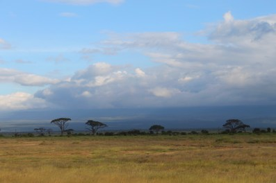 The flat plains of Amboseli National Park, Kenya