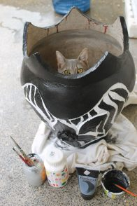 Painting my zebra pattern upcycled plant pot with a little help from my cat