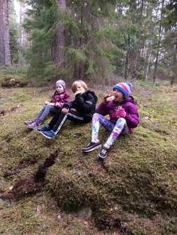 Hiking in forests at Eldgarnsö, Sweden