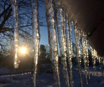 Icicles on a winter's day in Spånga, Sweden
