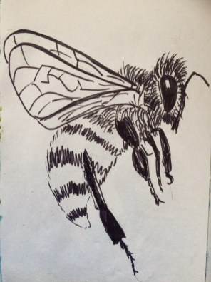 Pen and ink sketch of a bee