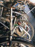 Bikes, bikes and more bikes, Amsterdam