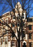 Amsterdam townhouses