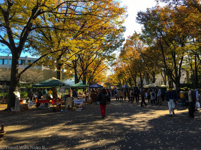 best-gardens-in-tokyo-6
