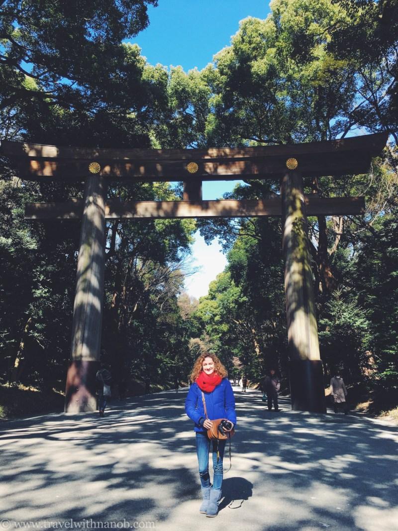meiji-shrine-tokyo-3