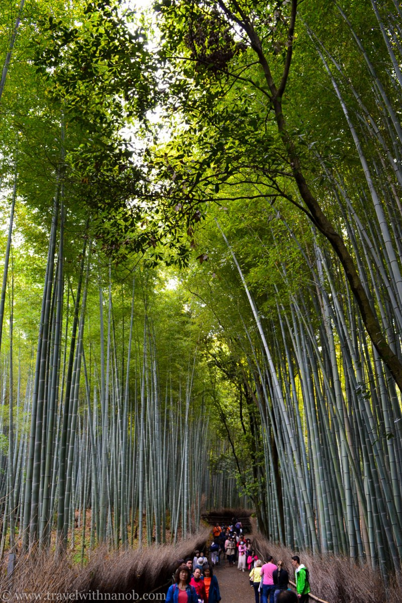 western-kyoto-guide-11