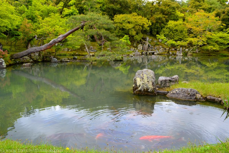western-kyoto-guide-3