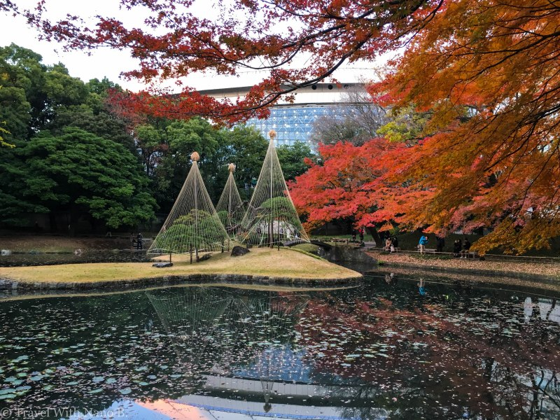 best-gardens-in-tokyo-9 (2)