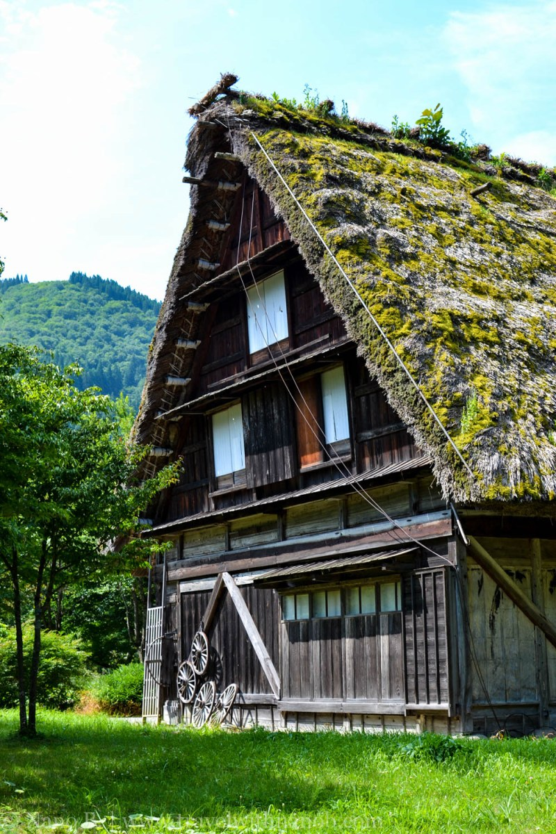 shirakawago-japan-13